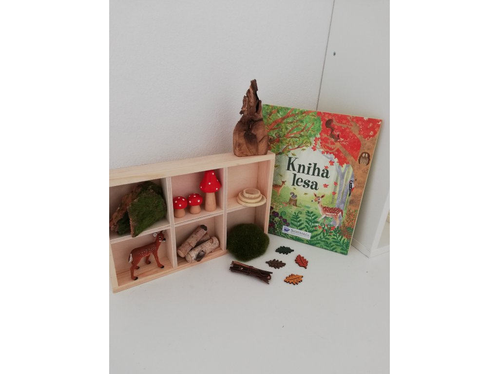 Senzorický box V lese